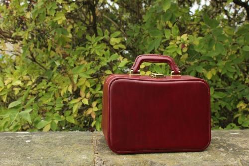 Burgundy vanity case