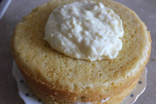 Mary Berry Whole Lemon Cake