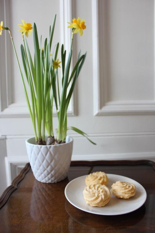 Custard cream recipe