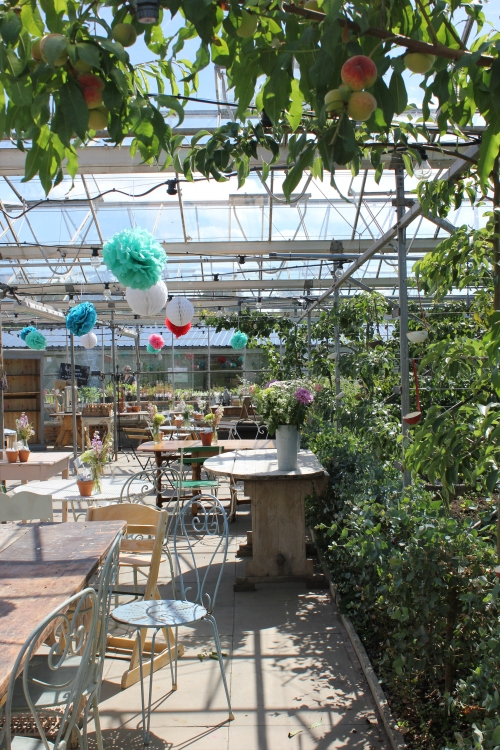 The Secret Herb Garden, Edinburgh